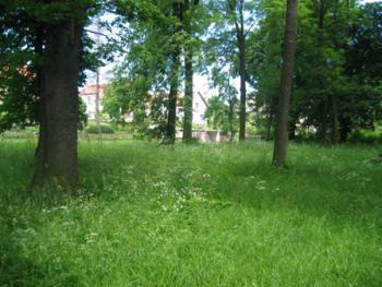 park Trzebina